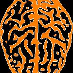 Cómo vender más con técnicas de neuromarketing